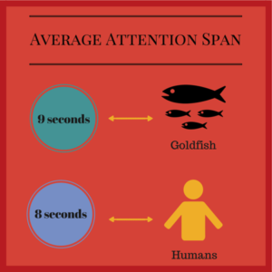 Average Attention Span